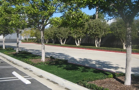 Synthetic Turf city median for stormwater management