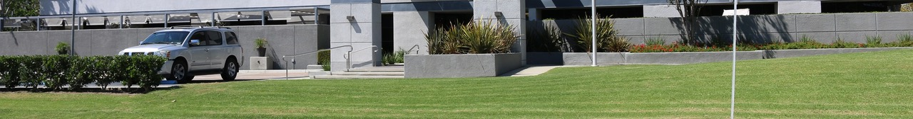 Synthetic Grass for Commercial landscaping
