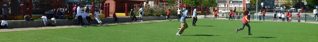 Synthetic Turf Sport Field