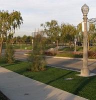 Municipal Landscaping