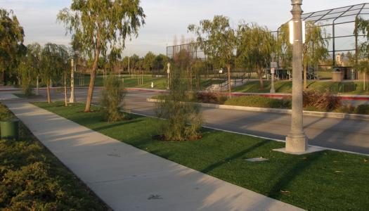 City Street Scapes, Medians, and Center Dividers, and Freeway On Ramps