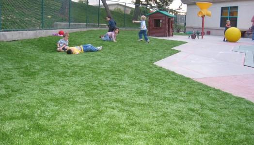 A Playground Grass the Kids Will Love