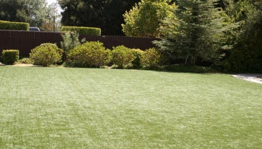 artificial grass - Do It Yourself Installation for Homeowners