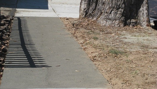 Rubber Sidewalks In Residential Areas Protect Trees
