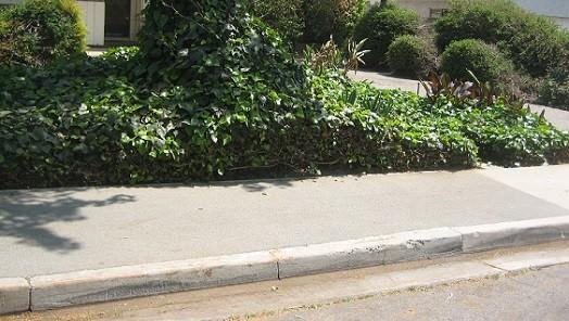 Rubber Sidewalks to Replace Cracked Sidewalks