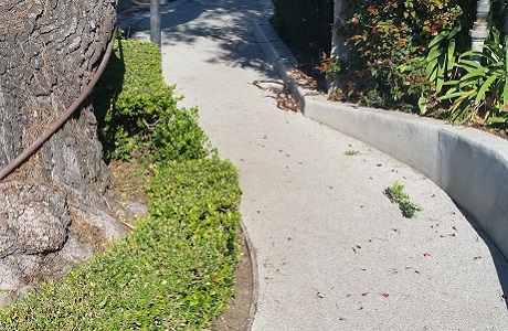 Rubber Sidewalk in Santa Barbara