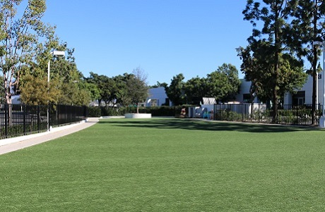 Synthetic Grass School Field