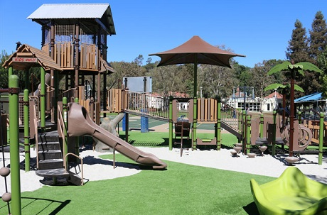 Synthetic Turf Community Playground