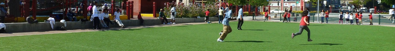 Quality Synthetic or Artificial  Grass