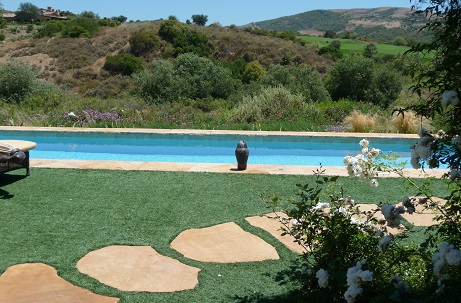 Synthetic Turf Around Pool