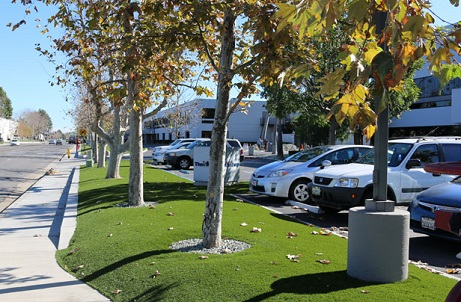 Synthetic Turf Around Office Building