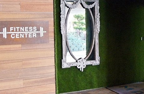Synthetic Turf Wall Hotel Fitness Center