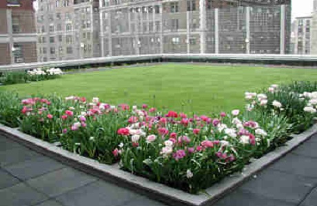 Synthetic Grass Rooftop Park