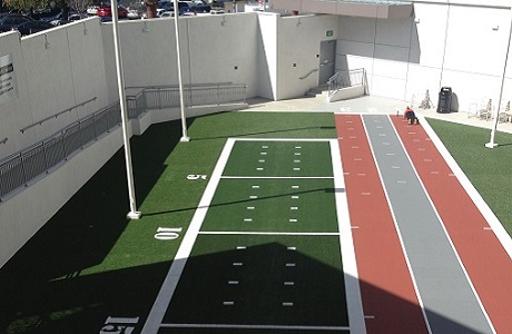 Synthetic Turf for Outdoor Gym Space