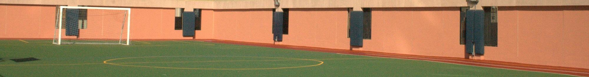 Versacoat specialty sport surfaces